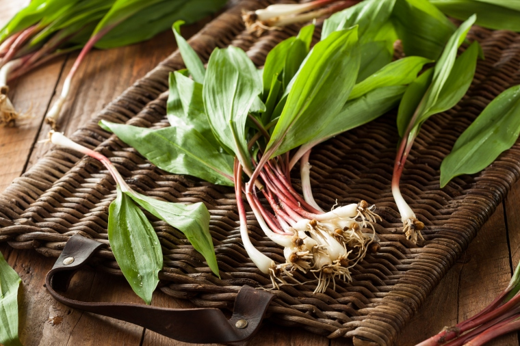 Raw Organic Green Ramps