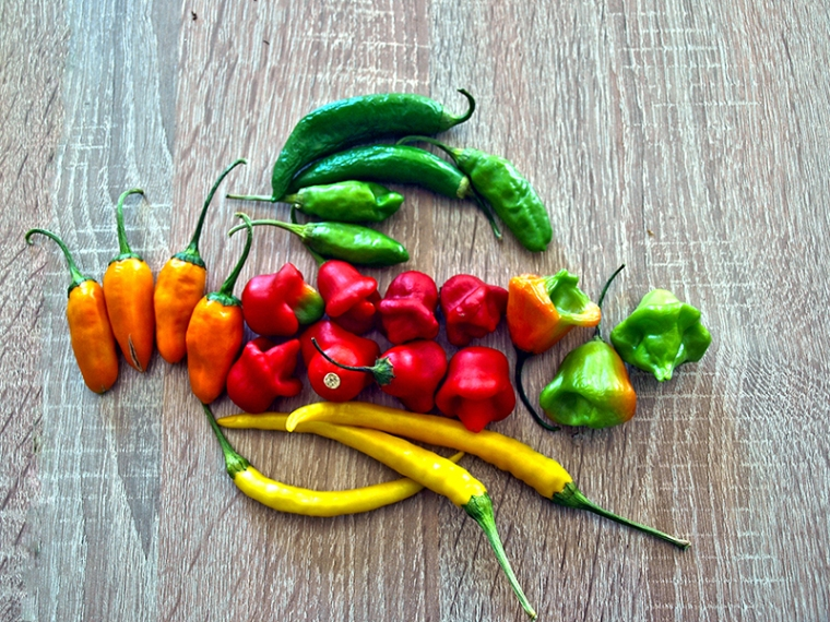Mixed Chilies