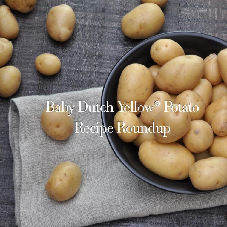 BlogPost_BabyDutchYellowPotatoRecipeRoundup